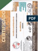 CONGRESO ADM 2013.pdf