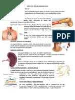 Partes Del Sistema Inmunologico