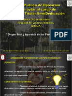 Origen Pares Craneales 2007
