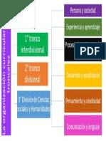 organizacion curricular por troncales.pptx