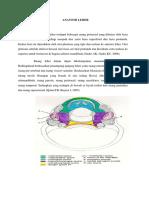 Anatomi Leher.docx