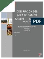 306319306-CAMPO-CAMIRI-docx.docx