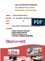 218911097-Sellantes-Resinosos-y-Ionomericos.pdf