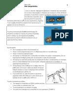MPEK-PETRELEOU.pdf