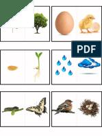 logic nature.pdf