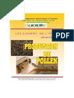 Production de Pollen