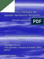 ANATOMIA Y FISIOLOGIA DEL APARATO REP.ppt