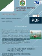 u1.Introduccion a La Fisiologia Animal.amezquita Mendoza Luis Fernando