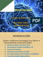 4. Etiología de Daño Cerebral (1)