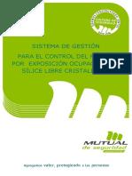 Formato Tipo de Sistema de Gestión SIO2 (Versión 2, Agosto 2015)