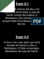 Ester - 008