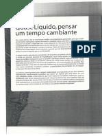 Carriço Reis - Quase Liquido.pdf