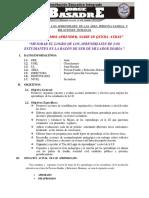 planmejoradelreapersona-150207084340-conversion-gate01.pdf