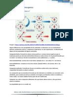 AD U1 Covalente o Ionico