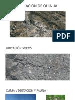 UBICACIÓN DE QUINUA.pptx