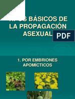 Tipos Básicos de La Propagación Asexual