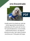 DOG FOUND.docx