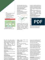 Resumen_PC1
