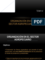 TEMA IV, Organizacion