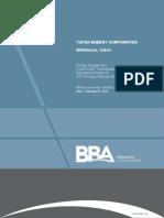 Storagetransmission Yec Background Paper