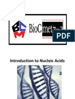 Introduction to Nucleic Acids