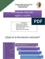 Formacion Reticular