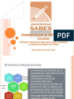 ADMINISTRACION_SISTEMAS_CALIDAD_1.pdf