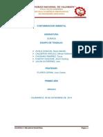 CONTAMINACÍON-AMBIENTAL monografia