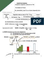 8. Digestion Ruminal