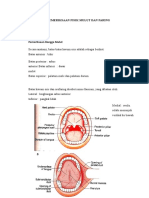 Pemeriksaan Fisik Mulut Dan Faring