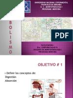 12-introduccion-a-metabolismo-y-glicolisis.pptx