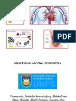 Transporte, nutrición heterot. metabolismo-1.pptx