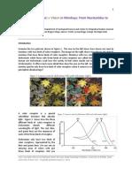 The Evolution of Color Vision in Monkeys.pdf