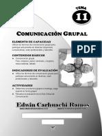 2017 11-Comunicación Grupal