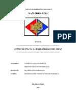 Monografia Sida Maria