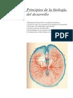 Principios de la biologia del desarrollo.pdf