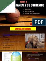 CAVIDAD CRANEAL Y SU CONTENIDO.pptx