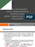 Intr, Lesion Cel, Inflamacion
