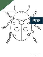 Ladybug 02