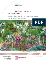 Sub Tropical Banana Nutrition