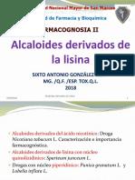 Alcaloides Derivados de Lisina