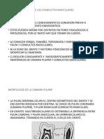 CAP.I ANATOMIA PULPAR Y C.RADICULARES.pptx