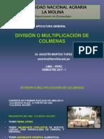 División de Colmenas 2017 i