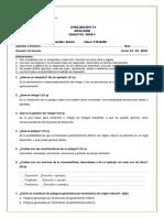 Evaluacion T3 - GEOLOGIA 6285 (01-07-16) DESARROLLADO.pdf