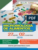 Curso_OnLine_Microbiologia_de_Alimentos_2018.pdf