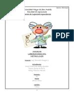 Informe Laboratorio 01 Fisica 2013 METROLOGIA