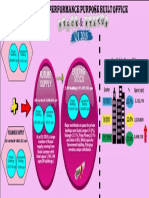OverallPerformancePBOQ12018 (1)