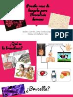 exposiciòn .pdf