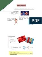 AA 1.pdf
