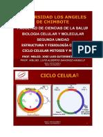 Ciclo Celular Mitosis y Meiosis PDF Impresion 2008